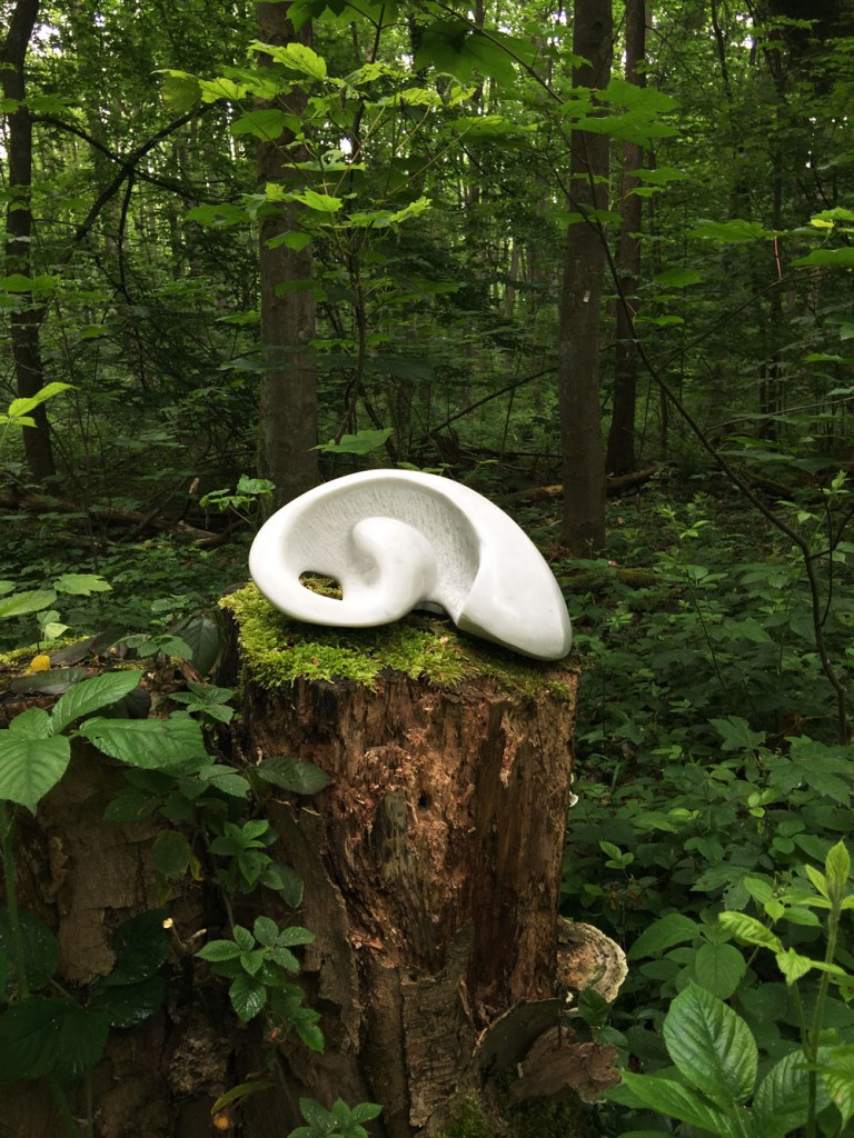 Stone In Forest - Hanna Gigling